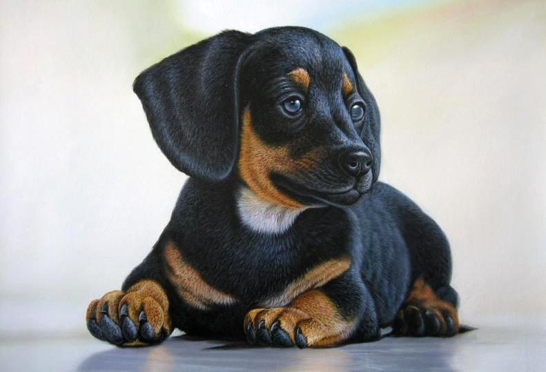 Portrait of a Little Buster
