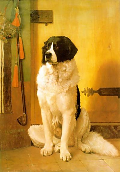 dog-15-repo