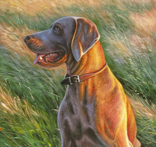 Portrait of jake out for a hunt for Painting of your dog